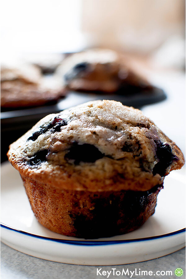 A dairy-free blueberry muffin on a plate.