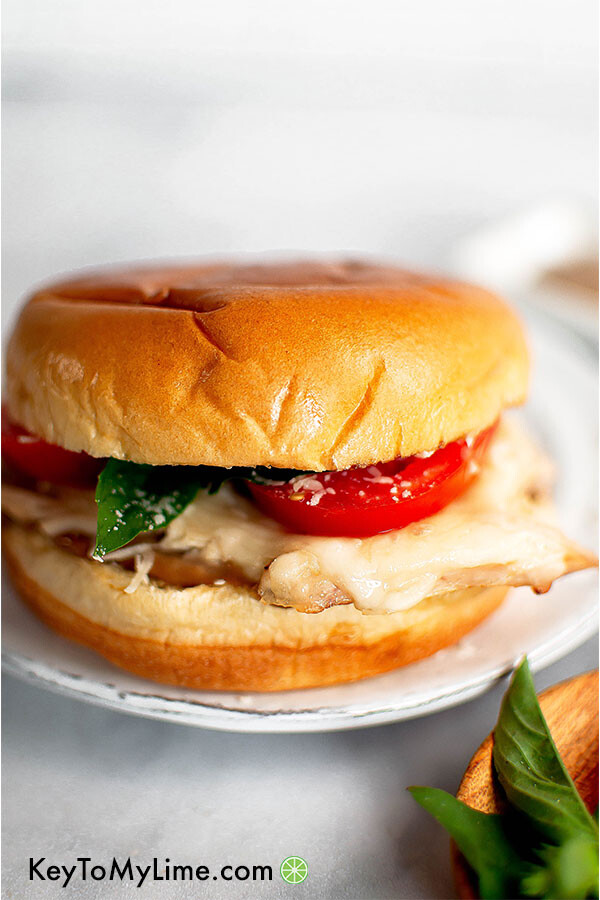 Rotisserie chicken bruschetta sandwich.