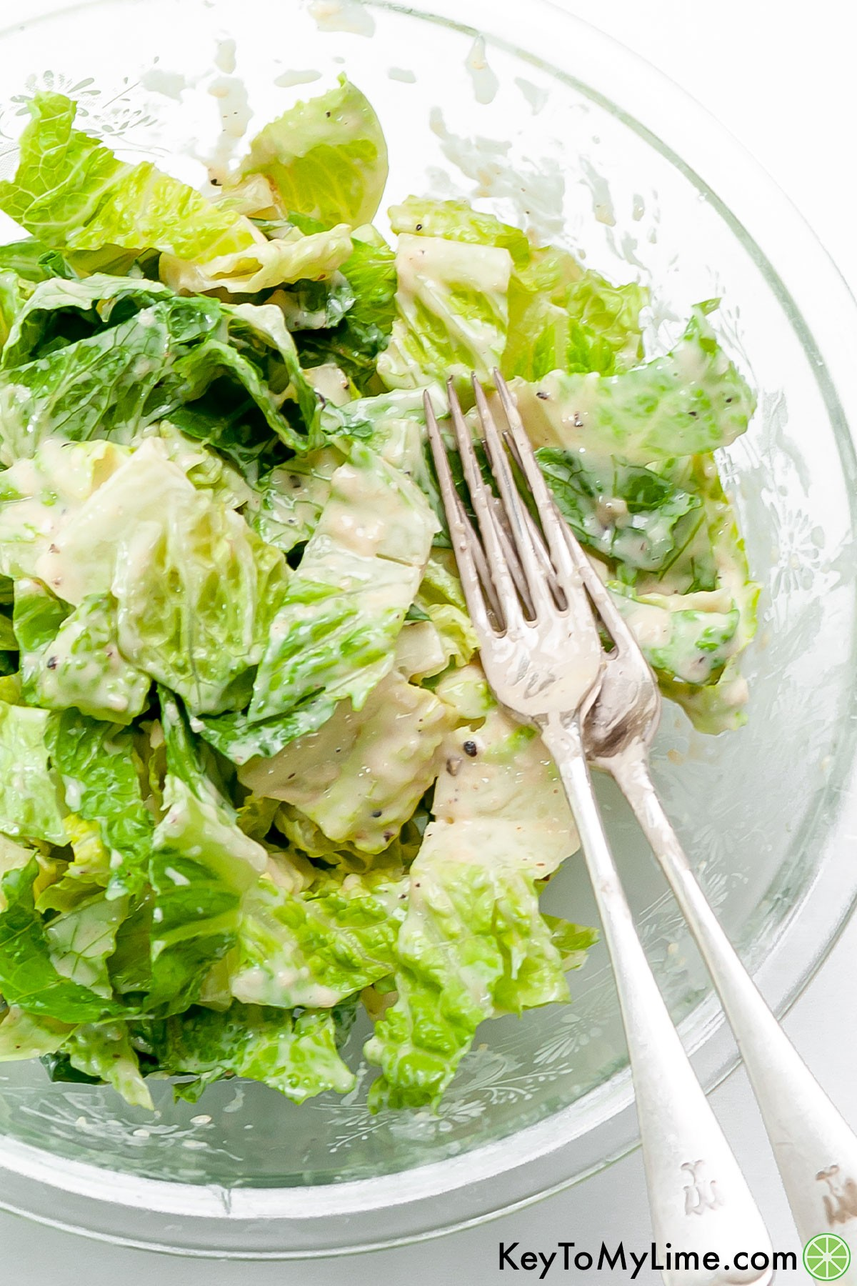 A bowl of cut up romaine topped with creamy Caesar dressing.