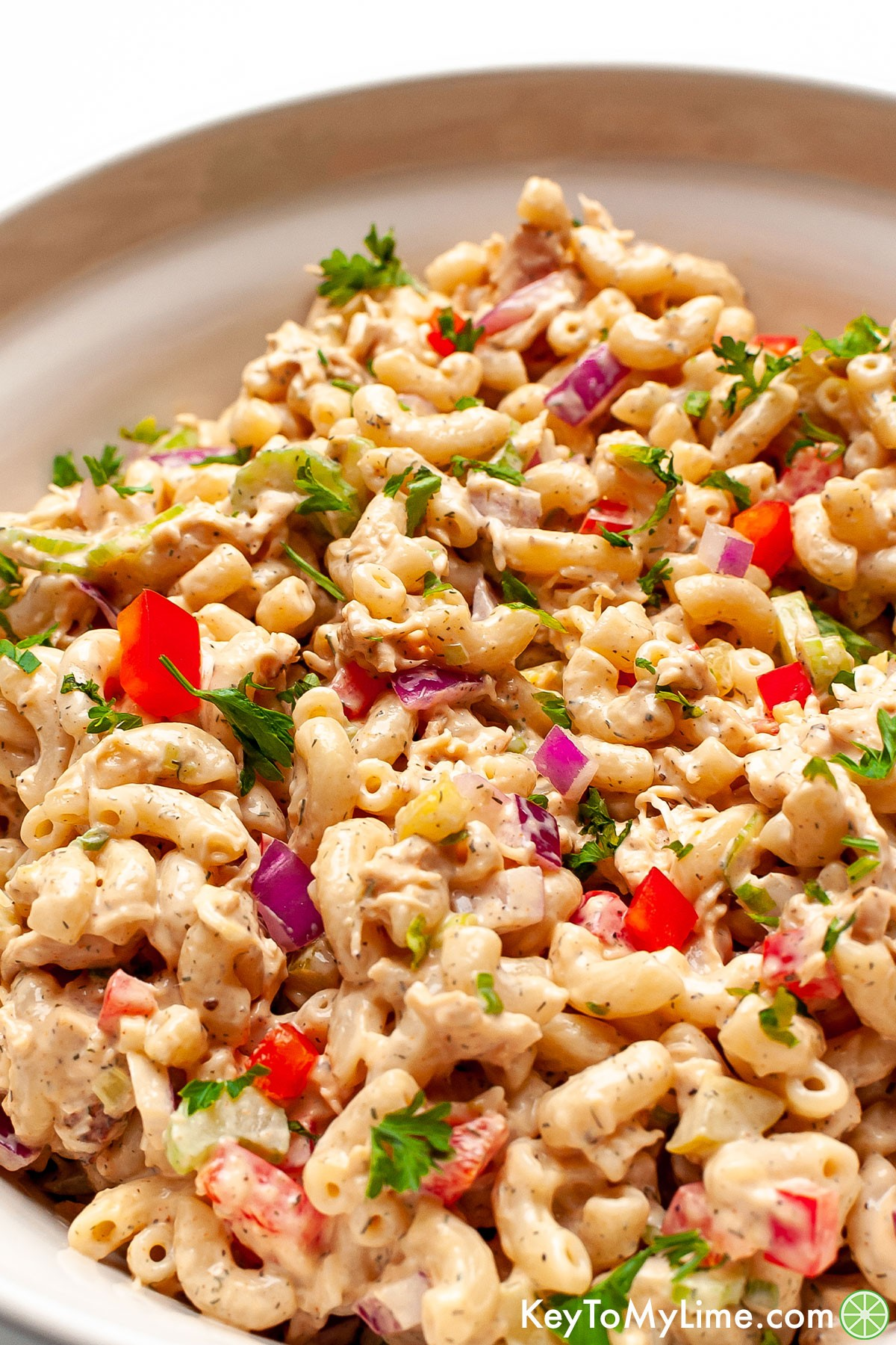 A close up image of a large bowl of chicken macaroni salad.